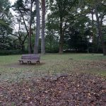 ポケモンGO、37日目、大宮公園へ行ってきました。